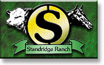 Standridge Circle S Ranch
